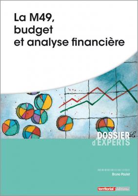 La M49, budget et analyse financière